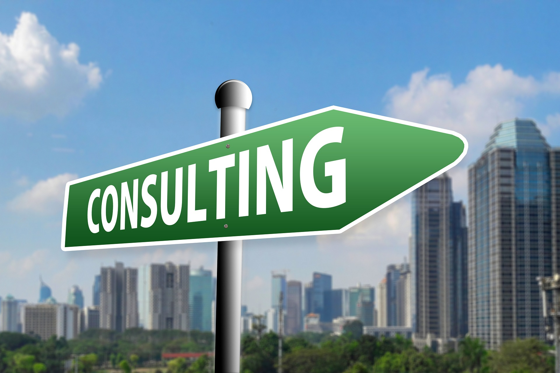reasons to seek the services of an SEO consultant